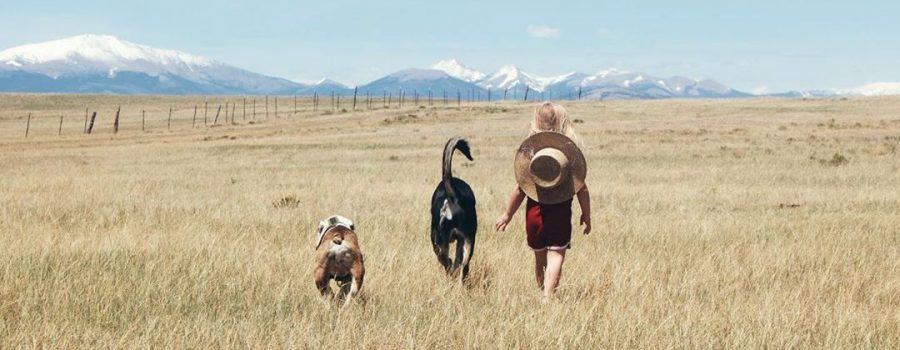 Family Adventures in Park County, Colorado | Explorer of the Month October 2020