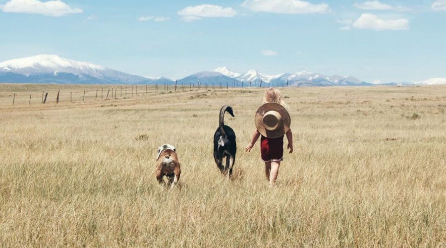 Family Adventures in Park County, Colorado   Explorer of the Month October 2020